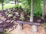 shade garden designs a