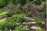 ... landscaping free woodland gardens and minnesota beauty of gardening