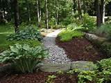 shade tree landscaping inc auburn nh 03032