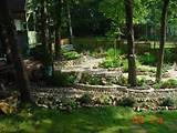 as a full sun garden learn about traditional shade garden ideas