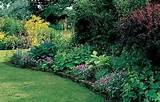 related articles 25 easy ideas for shade gardens