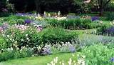 9992019 4 150x150 garden and landscape design for an english garden