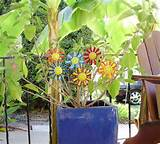 this glass daisy flower stays pretty all year perfect in the yard in
