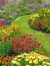 flower garden3