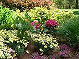 in designing perennial flower gardens since our founding in 1973