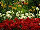 Garden: The Poetry of Flowers, at the New York Botanical Garden ...