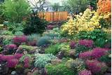 Gorgeous garden in spring flowers, with rhododendron, azalea bushes ...