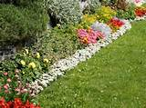 ... plants can add the wow factor into your home garden. (Photos.com
