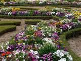 Flowers garden wallpapers.
