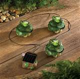 outdoor decor and accessories
