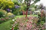 cottage flower gardens