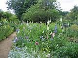 impressive cottage gardens