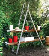 unique garden design. Wooden ladders make excellent garden decorations ...