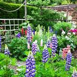 French Country Garden Design Ideas : French Country Garden Ideas