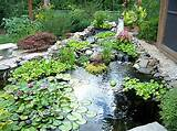 Small Garden Plans Entrancing Garden Ideas Lovely Great Garden Ideas ...