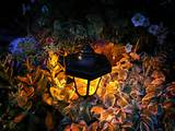 using solar garden lights for landscape lighting