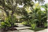 tropical zen garden design photograph tropical gardens