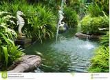 Royalty Free Stock Image: Tropical zen garden