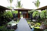 tropical landscape by gm construction inc