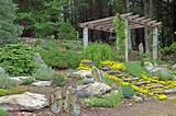 ... Garden Tropical Backyard Garden : Flower Garden Ideas. Zen Garden