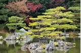 Zen garden in Kinkakuji Temple Park, Kyoto Image: 123rf.com