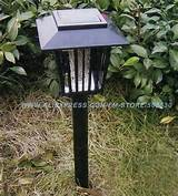 6pieces-lot-Solar-LED-Lamp-Mosquito-Killer-Zapper-Garden-Light-Outdoor ...