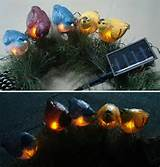 Five Birds Outdoor Solar Garden Lawn Light (RS100179)