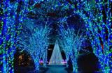 Atlanta Botanical Garden.