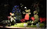 Atlanta Botanical Gardens, Garden Lights, Holiday Nights 0118_wm