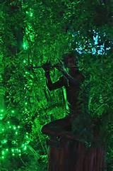 garden lights at atlanta botanical garden