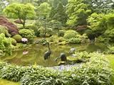 Japanese Zen Gardens 7 by EBAZZ8305