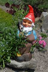 garden gnome pictures photos garden gnome