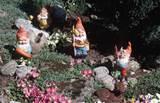 garden gnomes ndc3 jpg 239968 byte free image