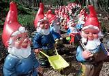 garden gnomes invading