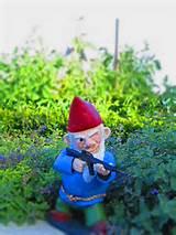 combat garden gnomes 019
