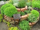 awesome small herb garden design layouts botanical herb spiral image
