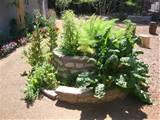 herb spiral garden