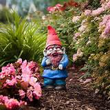 garden gnomes garden gnomes for the zombie apocalypse survivor gnome ...