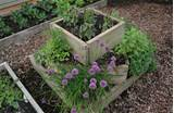 designs in herb gardening