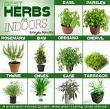 there is a list of herb garden ideas by using a container which one