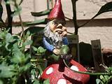 garden gnome sitting 300x225 A History of Garden Gnomes: From German ...