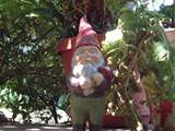 Description Garden gnome.JPG