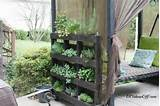 adore this garden bench filled with potted herbs by the inspired room