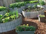 raised beds design and raised garden bed ideas with gardening herb