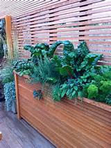 10 979 raised herb garden home design photos