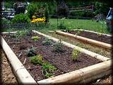 garden designs 12 best kitchen herbs plan 3 raised bed 4 x 3 raised