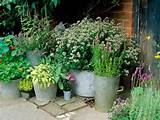 container-herb-garden-design-91