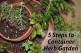 steps to an easy backyard herb garden fresh herbs