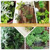 10 Small Space Container and Herb Garden Ideas