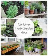 Container Herb Garden Ideas | Satori Design for Living